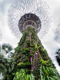 2018-01-01_Singapur (28 von 82)